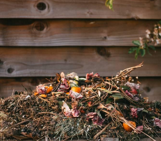 Composting helps fight climate change; Edward Howell on Unsplash